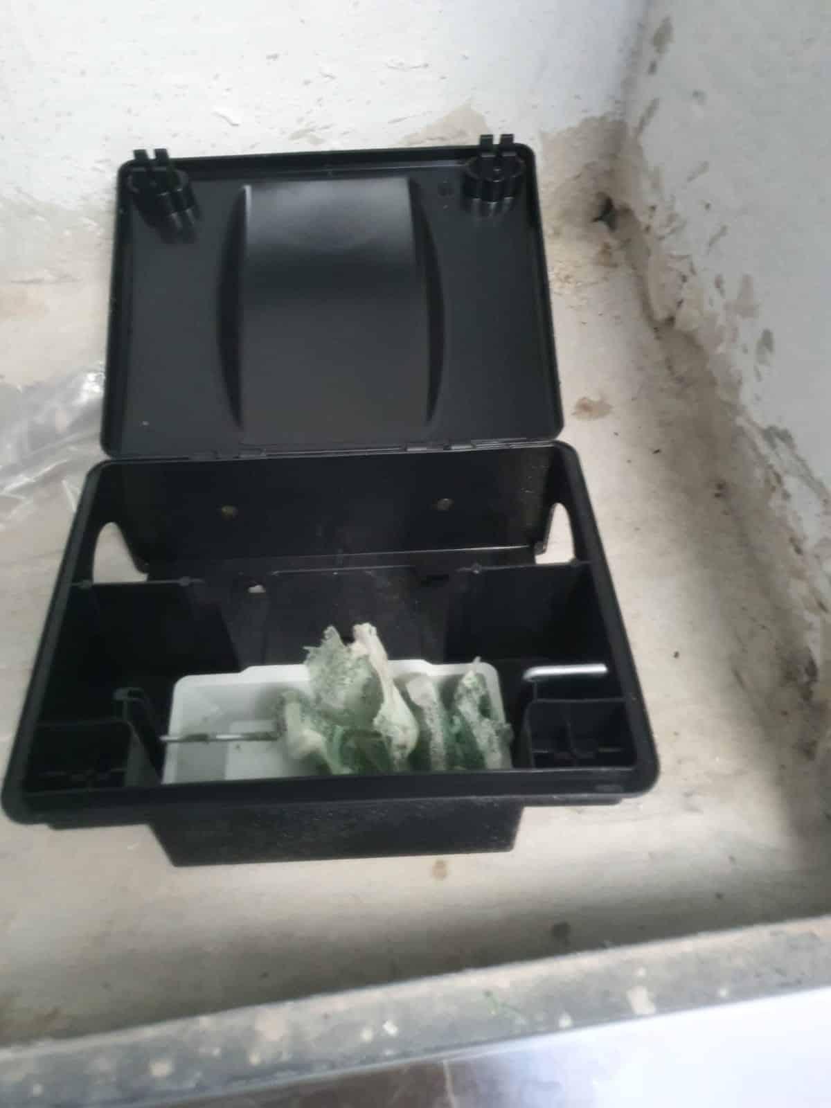 לוכד עכברים - לכידת עכברים בעזרת תיבת האכלה