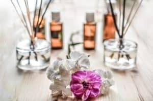 ריח התיקנים - סימנים לגוקים בבית